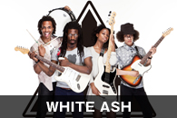 WHITE ASH